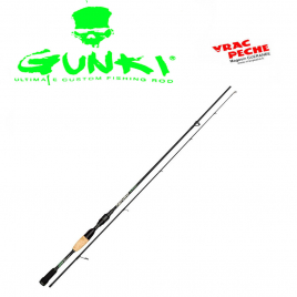Canne DEFY BLACK SPIN 13 fishing