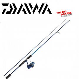 Ensemble daiwa DW 802 HFS BF + DW 4000 B