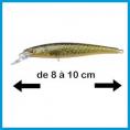 8 à 10 cm